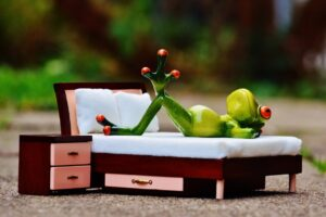 frog_love_thoughts_bed_figure_funny_cute_concerns-839400